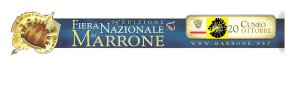15 marrone 3. png